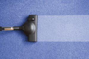 Steam Carpet Cleaning lakeland fl